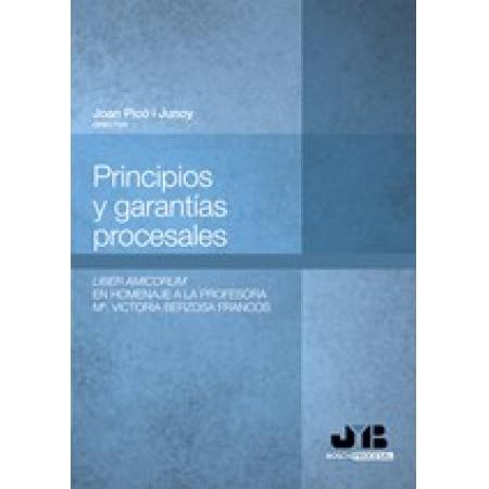 Principios y garantías procesales.