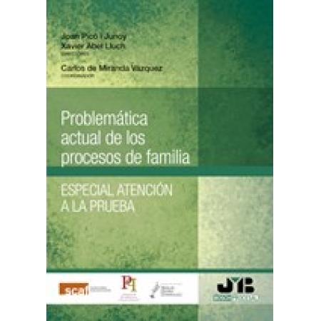Problemática actual de los procesos de familia.