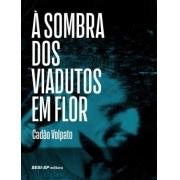 Sombra Dos Viadutos Em Flor, A