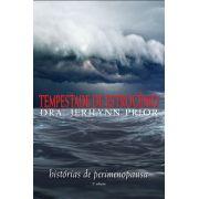 Tempestade de estrogênio - 2 ed.: Histórias de Perimenopausa