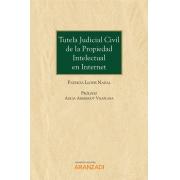 Tutela judicial civil de la propiedad intelectual en Internet