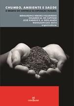 Chumbo, ambiente e saúde: o desafio do controle da exposição humana