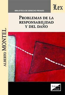 Problemas de la responsabilidad y del daño