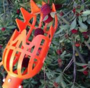 Coletor Pegador De Frutas Plástico