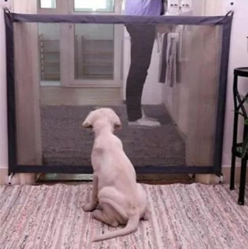 Tela Grade De Porta Para Cachorro Pet Gato Cães Bebê
