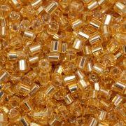 Vidrilhos Jablonex Ouro Médio Transparente 2x9/0=2,6mm