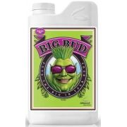 FERTILIZANTE MINERAL AN BIG BUD 100ML