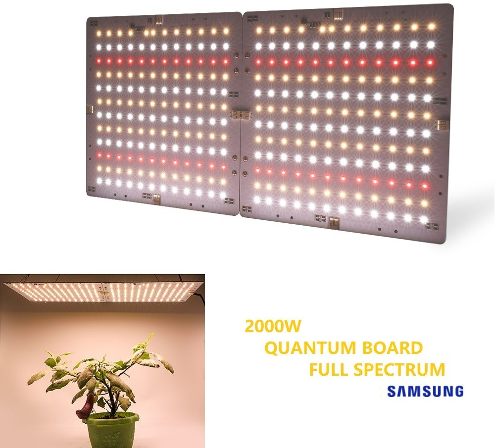 PAINEL GROW QUANTUM LED 2000W (SAMSUNG FULL SPECTRUM)
