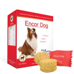 Encor Dog