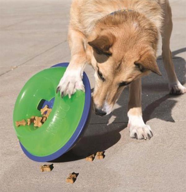 Brinquedo para cachorro Kong Tiltz
