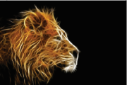 Tela Canvas Abstract Lion