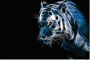 Tela Canvas  Blue Tiger