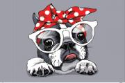 Tela Canvas Bulldog Laço