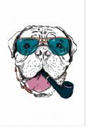 Tela Canvas Cão Cachimbo