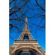 Tela Em Paris