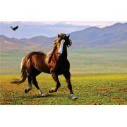 Tela Canvas  Horse