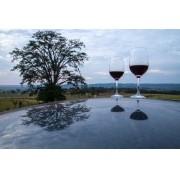 Vista com Vinho
