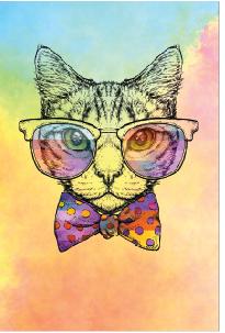 Tela Canvas  Cat Color