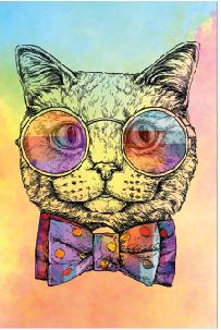Tela Canvas  Cat Color 2