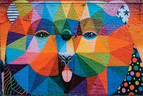 Tela Canvas  Grafic Color Bear