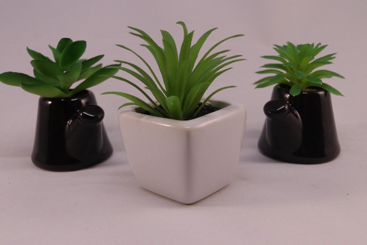 Kit 3 Mini Suculenta 01 Vaso Cerâmica Branco + 02 Vasos Chaleira Marrom
