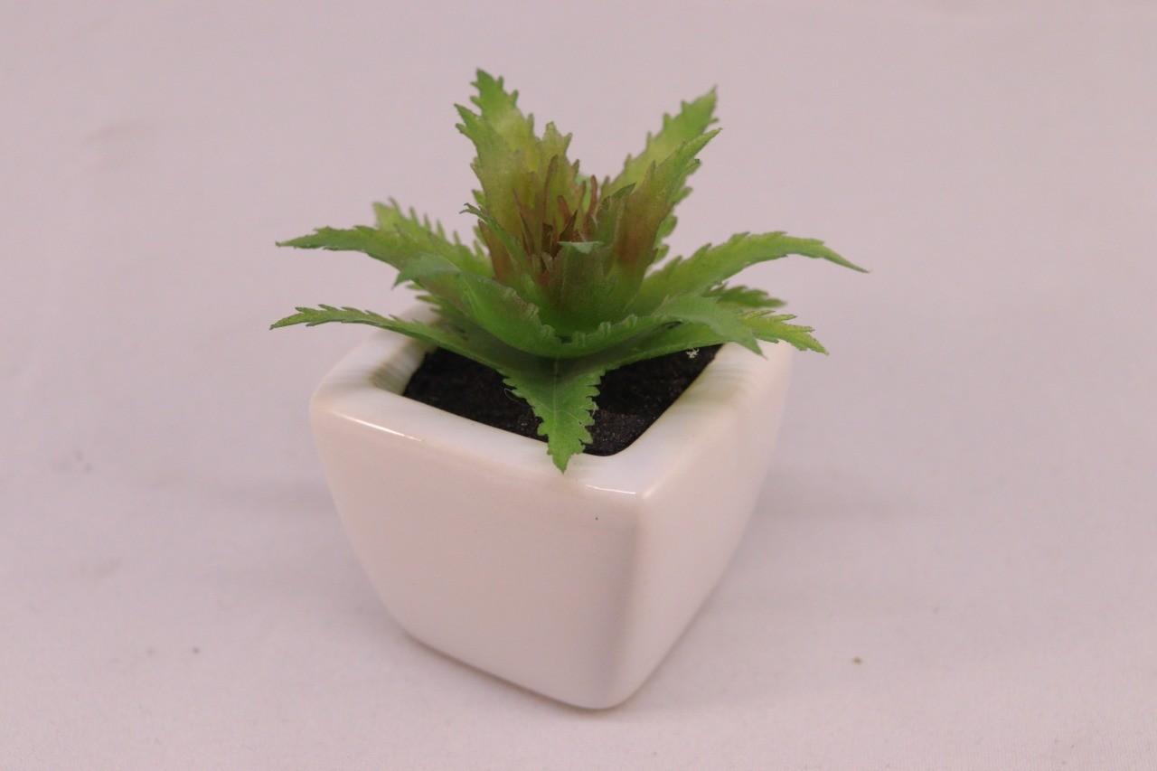 Kit 3 Mini Suculenta 02 Vaso Cerâmica Branco + 01 Vaso Chaleira Marrom