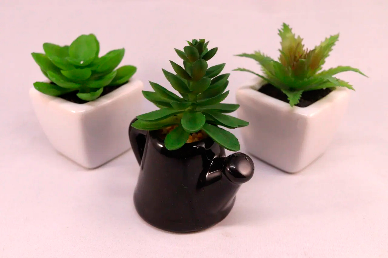 Kit 3 Mini Suculentas 02 Vasos Cerâmica Branco  01 Vaso Chaleira Marrom