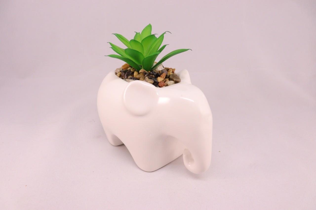 Kit Jardim Zen Mini Suculentas Vaso Cerâmica Buda + Elefante