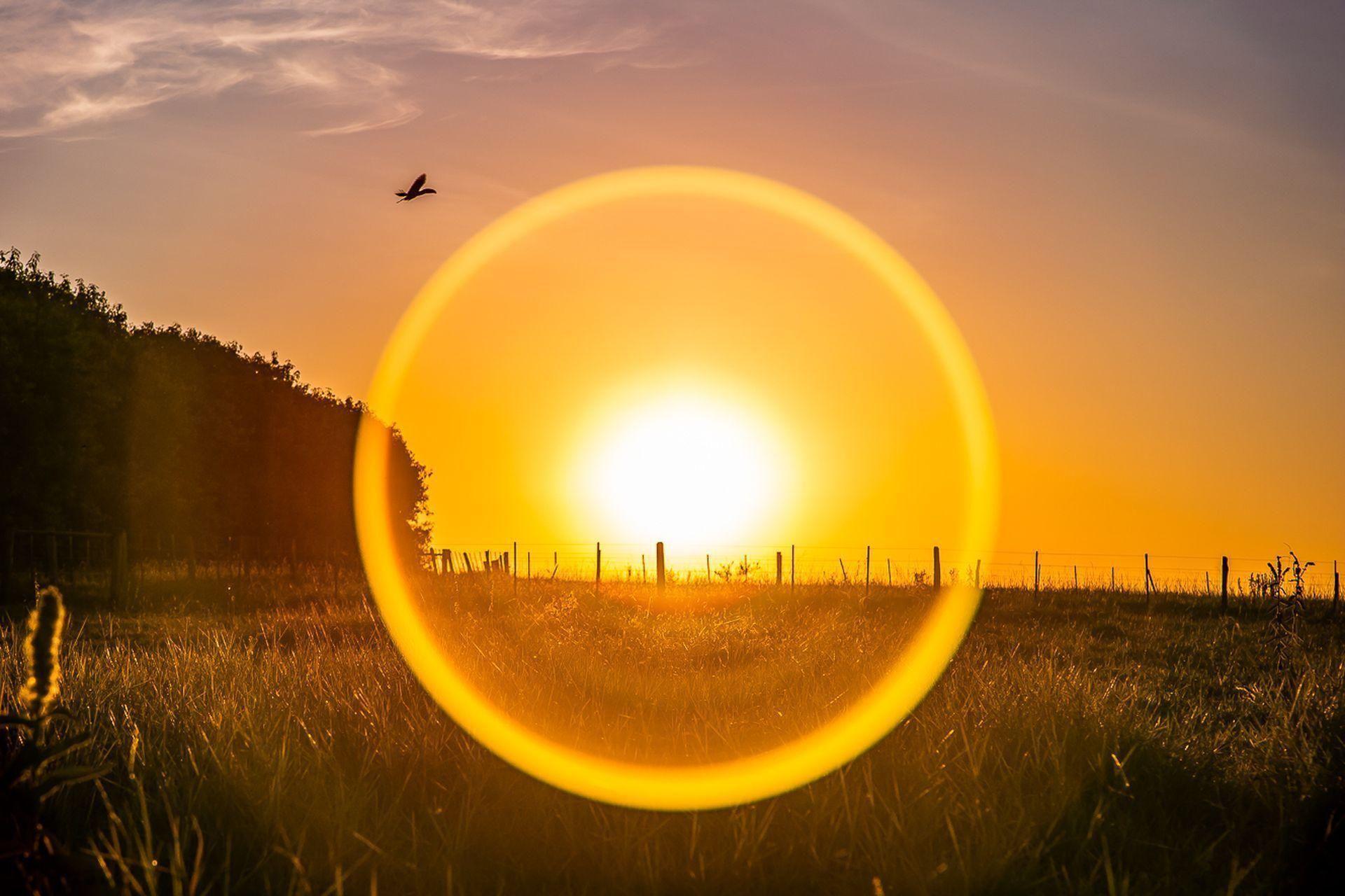 Círculo Solar