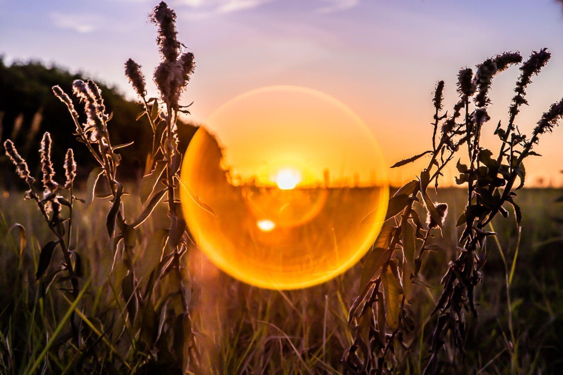 Tela Círculo Solar
