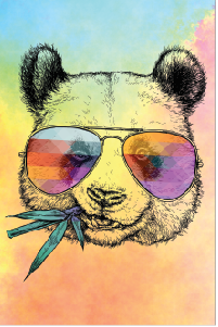 Tela Canvas Color Pug