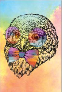 Tela Canvas Owl Color