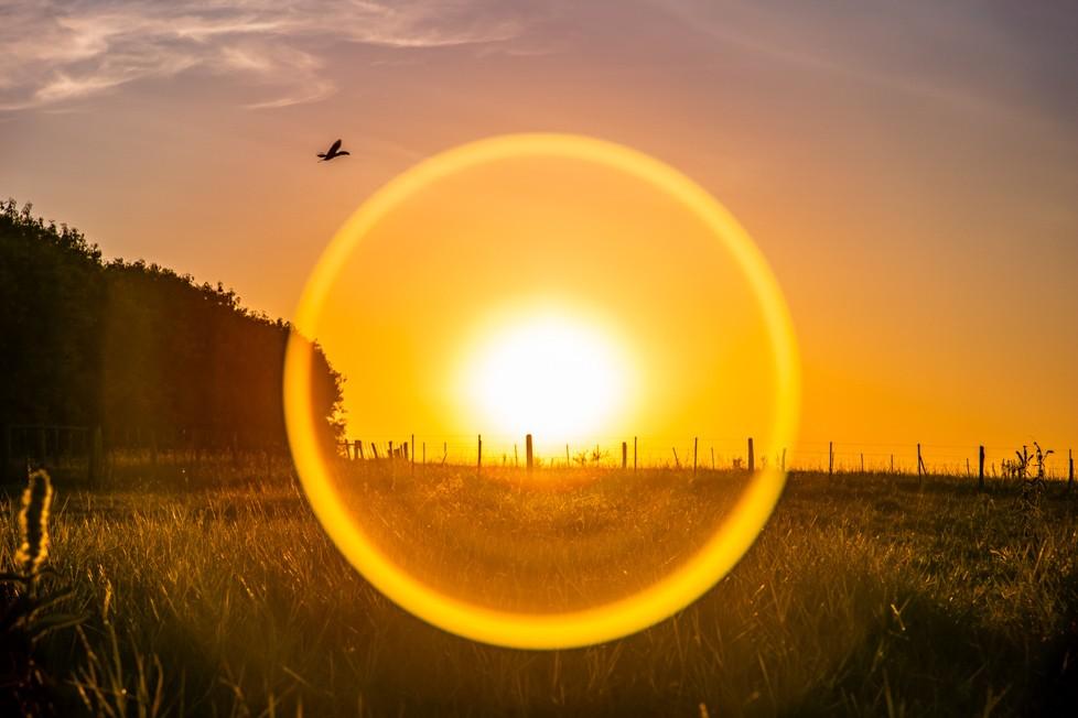 Tríptico Círculos Solares 01