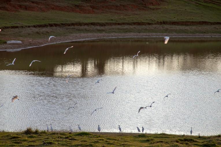 Tríptico na Beira da Lagoa