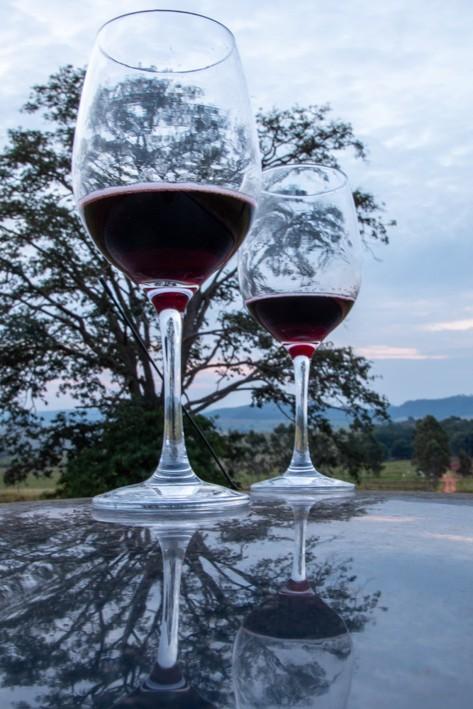 Tríptico Vista com Vinho