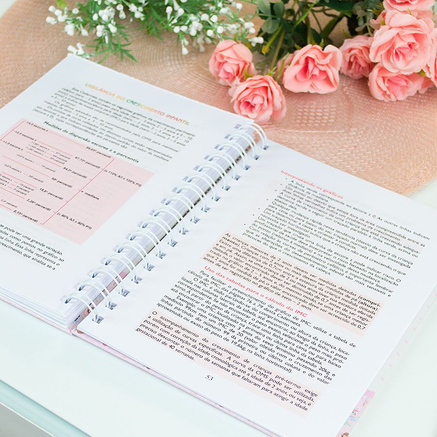 Caderneta de Vacinação personalizada tropical flamingos  - Valentina Milan Papelaria
