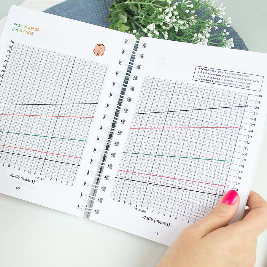 Caderneta de Vacinação personalizada elefantinho  - Valentina Milan Papelaria