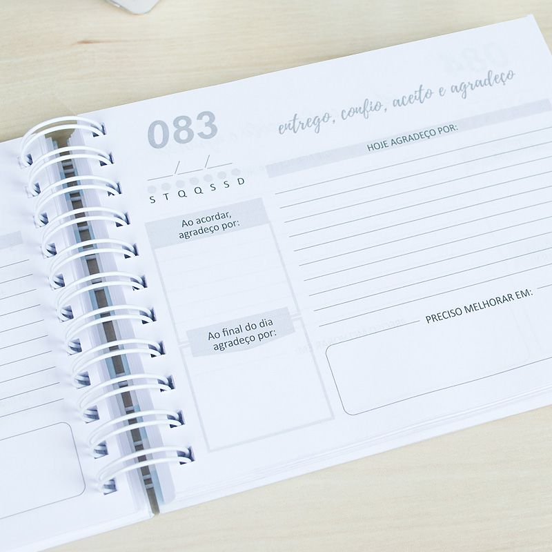 Caderno da Gratidão - Dia Especial  - Valentina Milan Papelaria