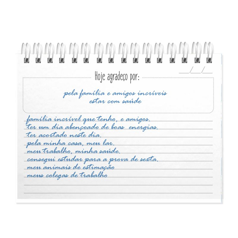 Diário  da Gratidão  personalizado estampa cactus   - Valentina Milan Lembrancinhas e Papelaria