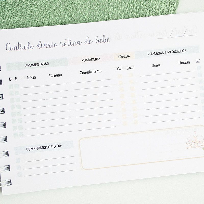 Controle de Rotina do Bebê aviões  - Valentina Milan Papelaria