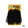 Cabelo Bio Fibra Agata Crochet Braids - Black Beauty