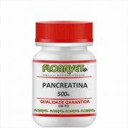 Pancreatina em Pó Pote Com 500 G - Uso Veterinário