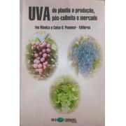 UVA: do Plantio a Produção, Pós-Colheita e Mercado com 45% de desconto