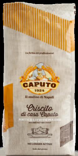 CRISCITO (fermento mãe natural desidratado)  1kg Caputo