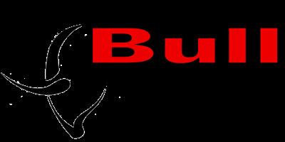 BULL BIKER