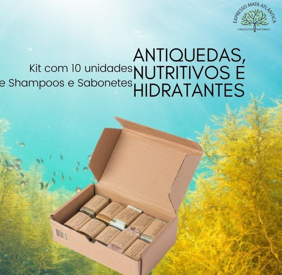 10 Shampoos barra e Sabonetes Naturais Veganos da Expresso Mata Atlântica.