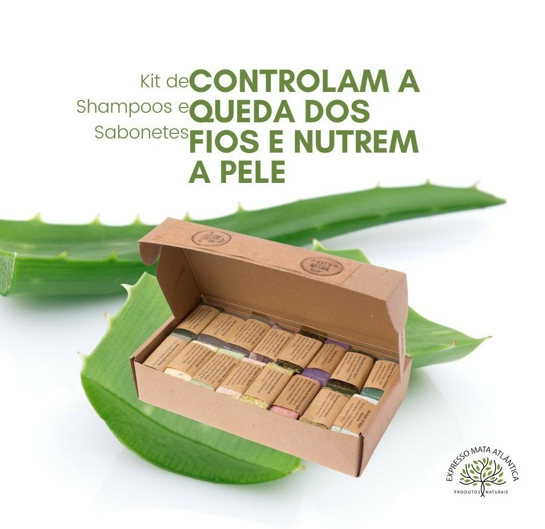 8 Shampoos barra Veganos 8 sabonetes Naturais da Expresso Mata Atlântica