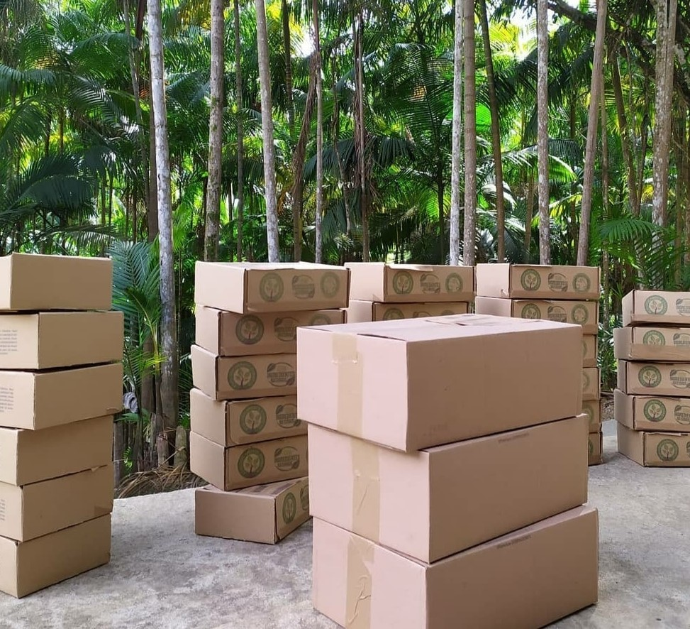 Caixa de Bambu P porta condicionador da Expresso Mata Atlântica