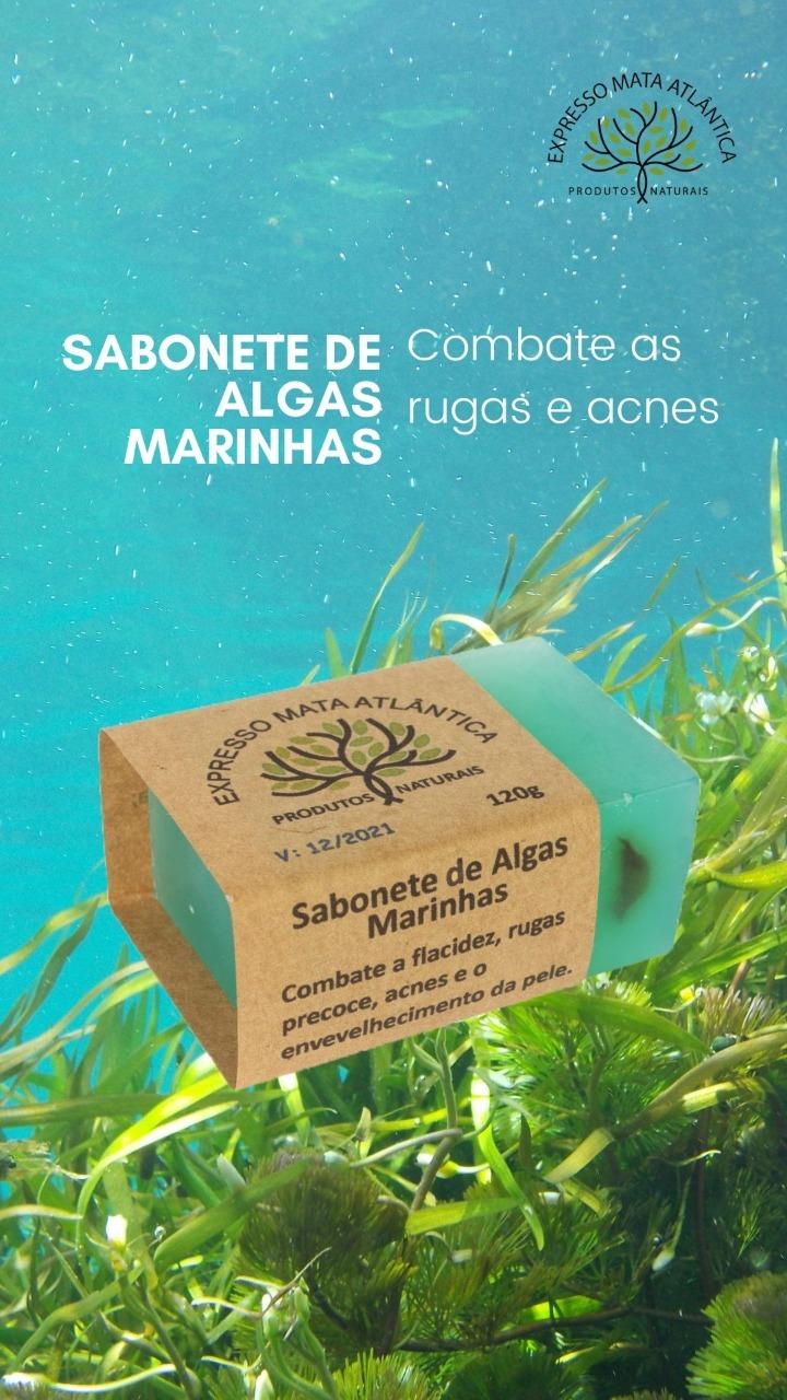 Sabonete Vegano Natural Algas Marinhas da Expresso Mata Atlântica