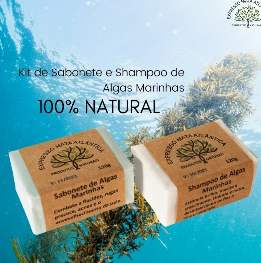 Shampoo Sólido Vegano e sabonete de Algas da Expresso Mata Atlântica